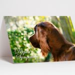 Pet Loss Sympathy Cards